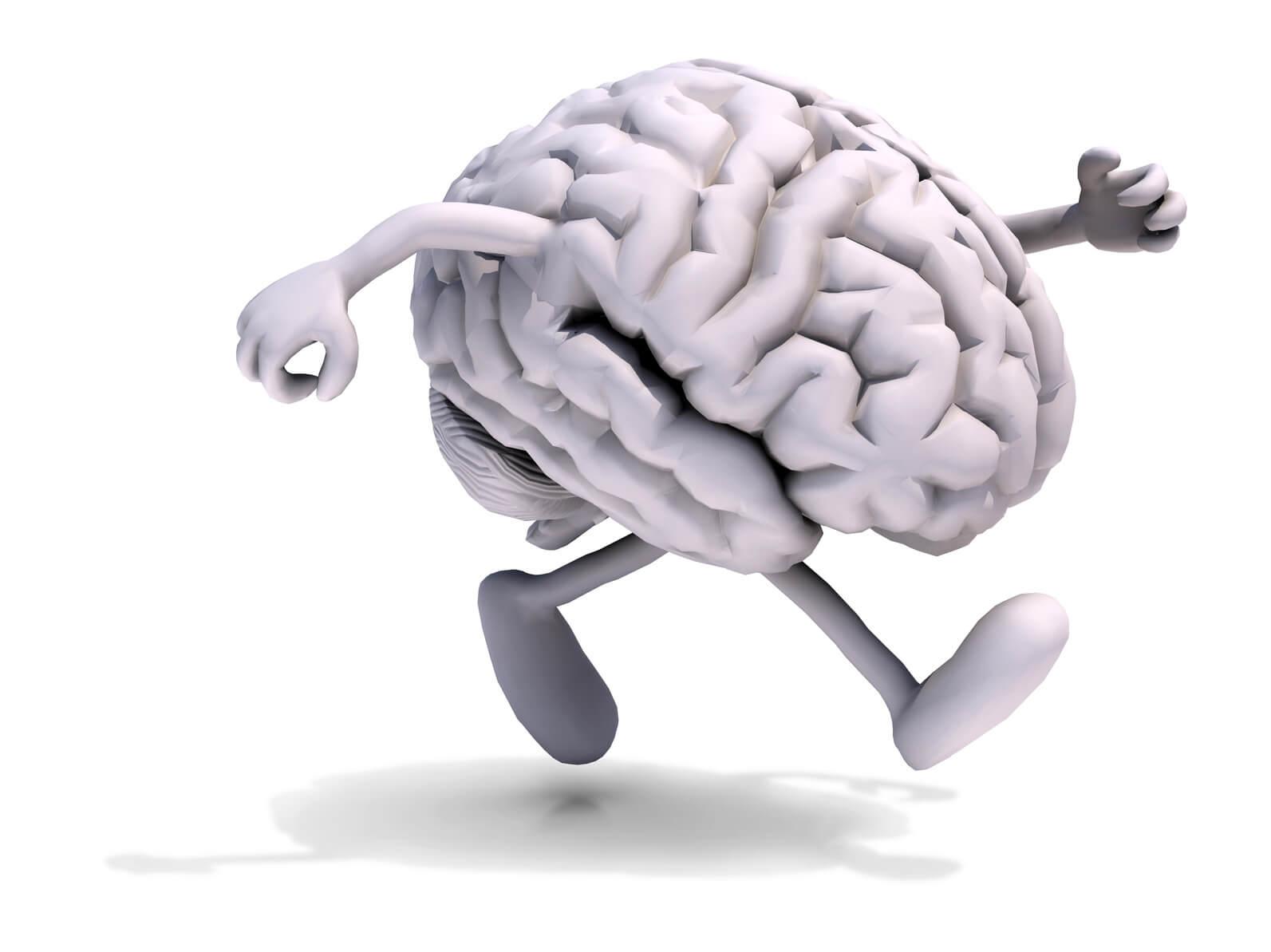Gehirn Beine_compr